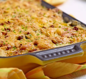 Chicken Gratin with Beer and Honey Mustard